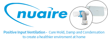 mould-remover-chichester